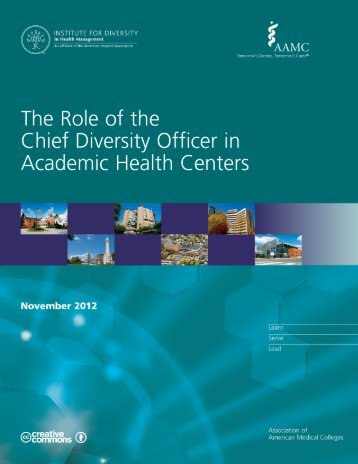 The Role of the Chief Diversity Officer in Academic Health Centers