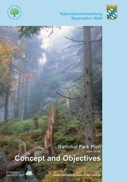 Preparation of the National  Park Plan - Nationalpark Bayerischer Wald