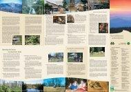 Forest Wilderness without Borders - Nationalpark Bayerischer Wald