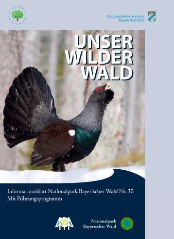 Unser Wilder Wald Nr. 30 Barrierearm  - Nationalpark Bayerischer ...