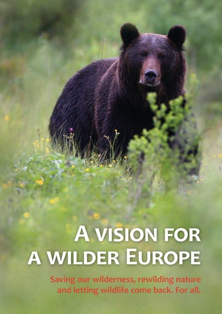 A-Vision-for-a-Wilder-Europe-Oct-2013