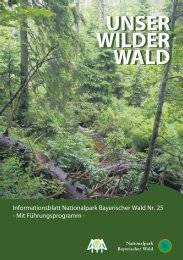 Unser Wilder Wald Nr. 25 Barrierearm - Nationalpark Bayerischer ...