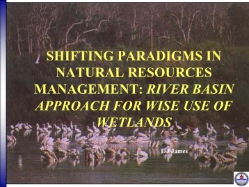 shifting paradigms in natural resources management: river basin ...