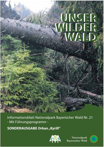 Kyrill - Nationalpark Bayerischer Wald