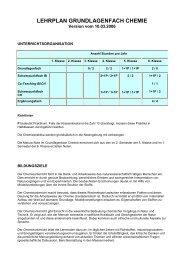 LEHRPLAN GRUNDLAGENFACH CHEMIE - Pflumm.name