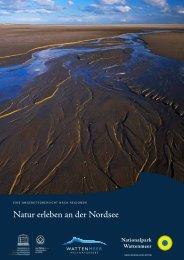 Natur erleben an der Nordsee - Nationalpark Wattenmeer
