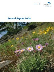 Annual Report 2008 - Net4Gas