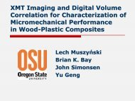 XMT Imaging and Digital Volume Correlation for Characterization of ...