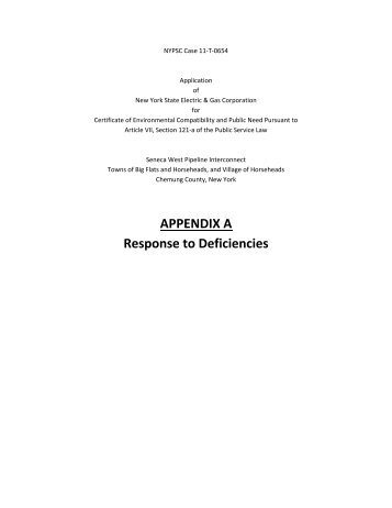 APPENDIX A Response to Deficiencies - nyseg