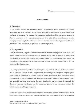 Les mycorhizes 1. Historique 2. La mycorhize - Pistes