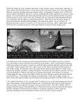 lfjkt4w - Page 6