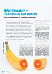 Hybridkeramik – - Arbeitsgemeinschaft Keramik