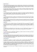 GranBretagna - Camera di Commercio di Mantova - Camere di ... - Page 5