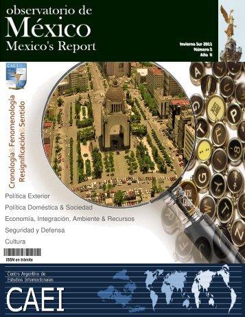 Observatorio de México, Nº5, Año II, Invierno Sur 2011 - CAEI