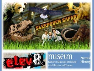 Sleepover Safari at the Dead Zoo - Irish Museums Association