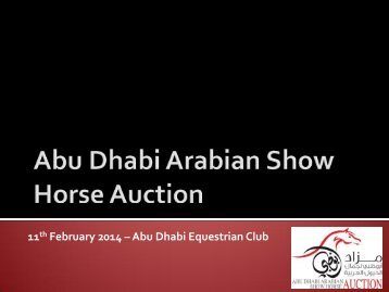 Auction 2014 Horses