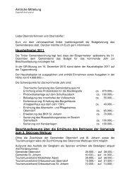 Bürgermeisterinformation zum Download (116 kB) - Gemeinde ...