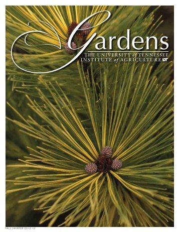 Fall|Winter 2012-13 - UT Gardens - The University of Tennessee