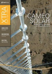 January 2011 - Volume 11 - Issue 3 - Xcel Energy