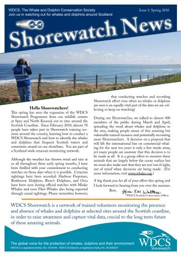 Shorewatch News - Whale and Dolphin Conservation Society