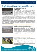 Shorewatch News - Whale and Dolphin Conservation Society - Page 3