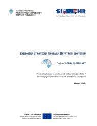 Zajednička strategija izvoza za Hrvatsku i Sloveniju - IDA