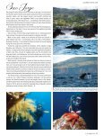 Read article - Visit Azores - Page 5