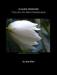 Flower-Essences-All-About-Relationships
