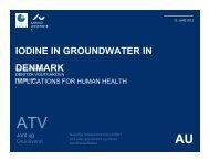 IODINE IN GROUNDWATER IN DENMARK - ATV - Jord og Grundvand