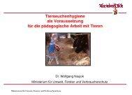 Vortrag von Dr. Konrad Naujok, Ministerium für Umwelt, Forsten und ...