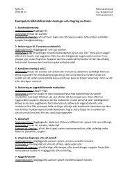 Exempel på bålstabiliserande övningar och stegring av dessa.
