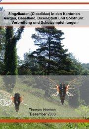 Singzikaden (Cicadidae) in den Kantonen  ... - Pro Natura Baselland