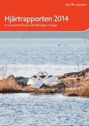 Hjartrapport2014