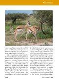 Jagdland Namibia: Wie hast Du Dich in 50 Jahren verändert! - Seite 2