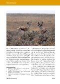 Jagdland Namibia: Wie hast Du Dich in 50 Jahren verändert! - Seite 7