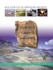 Minería y Medio Ambiente - Tecnologías Limpias