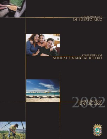 ANNUAL fINANCIAL REPORT JUNE 30, 2002 Of PUERTO RICO