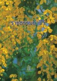 π - ThaiITTeacher