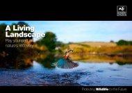 TWT A Living Landscape vision FINAL2.pdf - Gwent Wildlife Trust