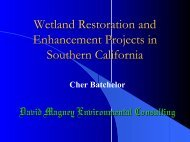 Wetland Restoration and Enhancement Projects in Southern California