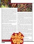Territorio - L'Informatore Agrario - Page 3