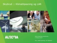 Jan Jeppesen: Skybrud, Klimatilpasning og LAR