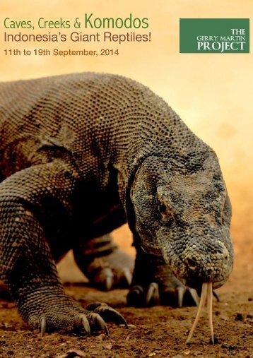 caves-creeks-komodos-indonesia-giant-reptiles