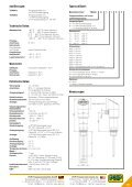 und Analogausgang - PKP Prozessmesstechnik GmbH - Seite 2