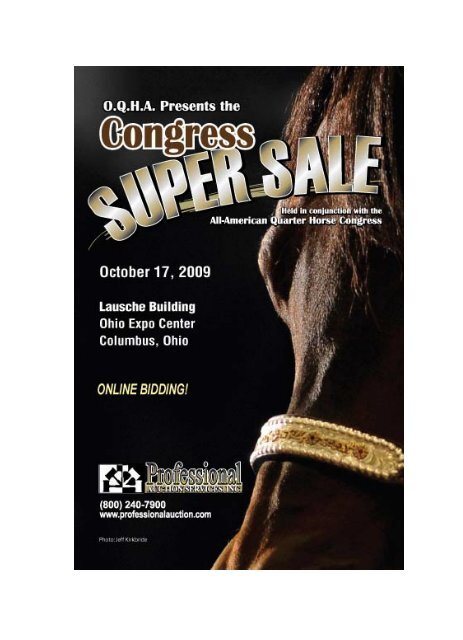 CONDITIONS OF SALE - Professional Auction Services, Inc.
