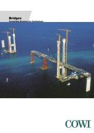 Bridges - Cowi