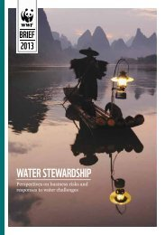 WATER STEWARDSHIP - WWF