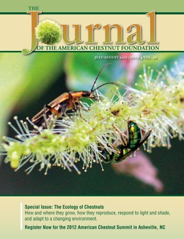 Volume XXVI No.4 July-Aug 2012 - The American Chestnut ...