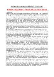 2012-2013mini Bezirk Bericht