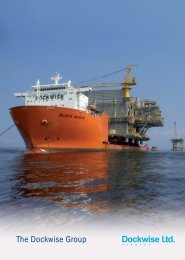 The Dockwise Group